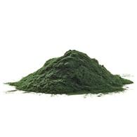 mikro algi